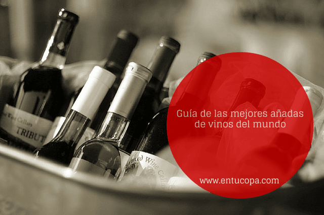 Guía de las mejores añadas históricas de vinos del mundo